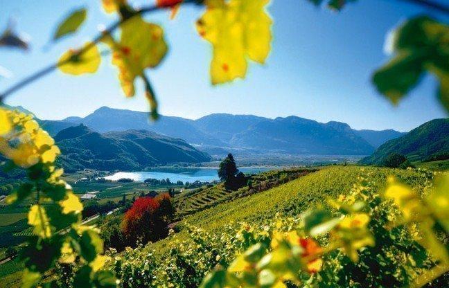 see1 648x416 Alto Adige la soluzione per tutte le stagioni